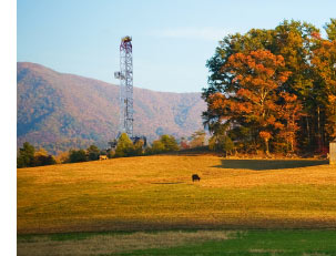 Fall trees with rig